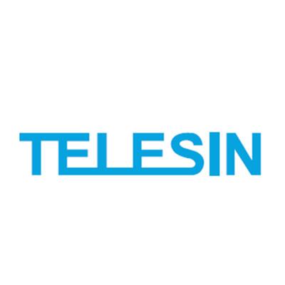 Telesin