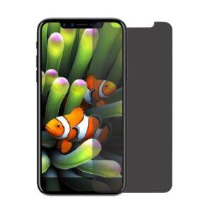 Sichtschutz Display Panzerglas für das iPhone 11 Pro / iPhone XS und iPhone X