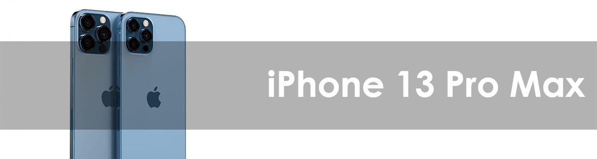 iPhone 13 Pro Max Zubehör